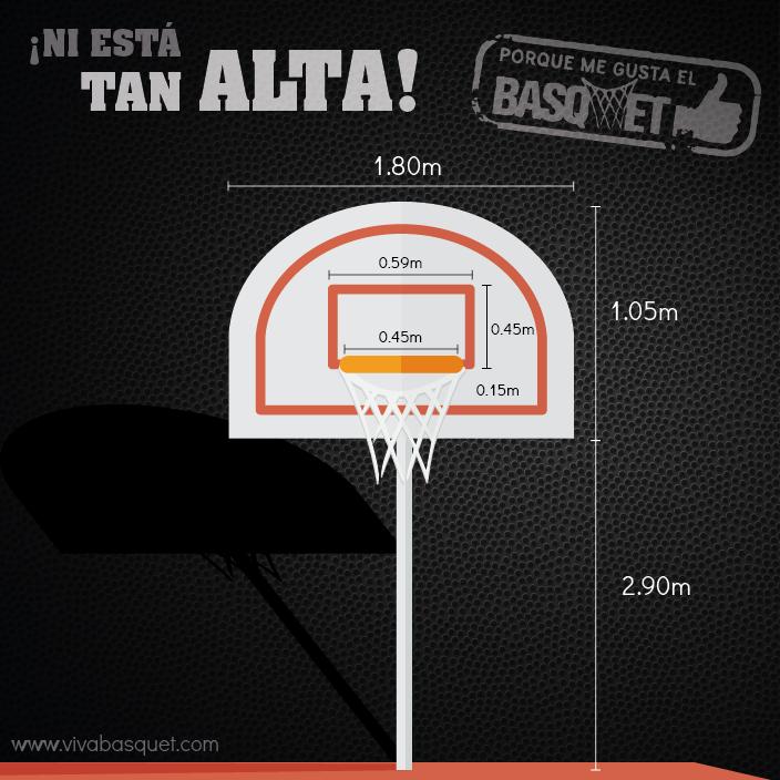 ¡Ni está tan alta! por Viva Basquet.