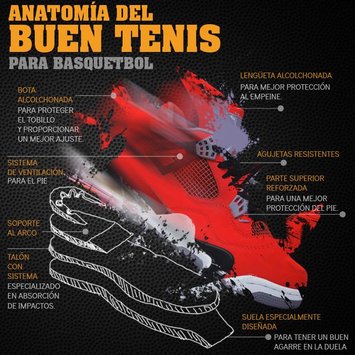 La anatomía de un buen tenis de basquet por Viva Basquet.