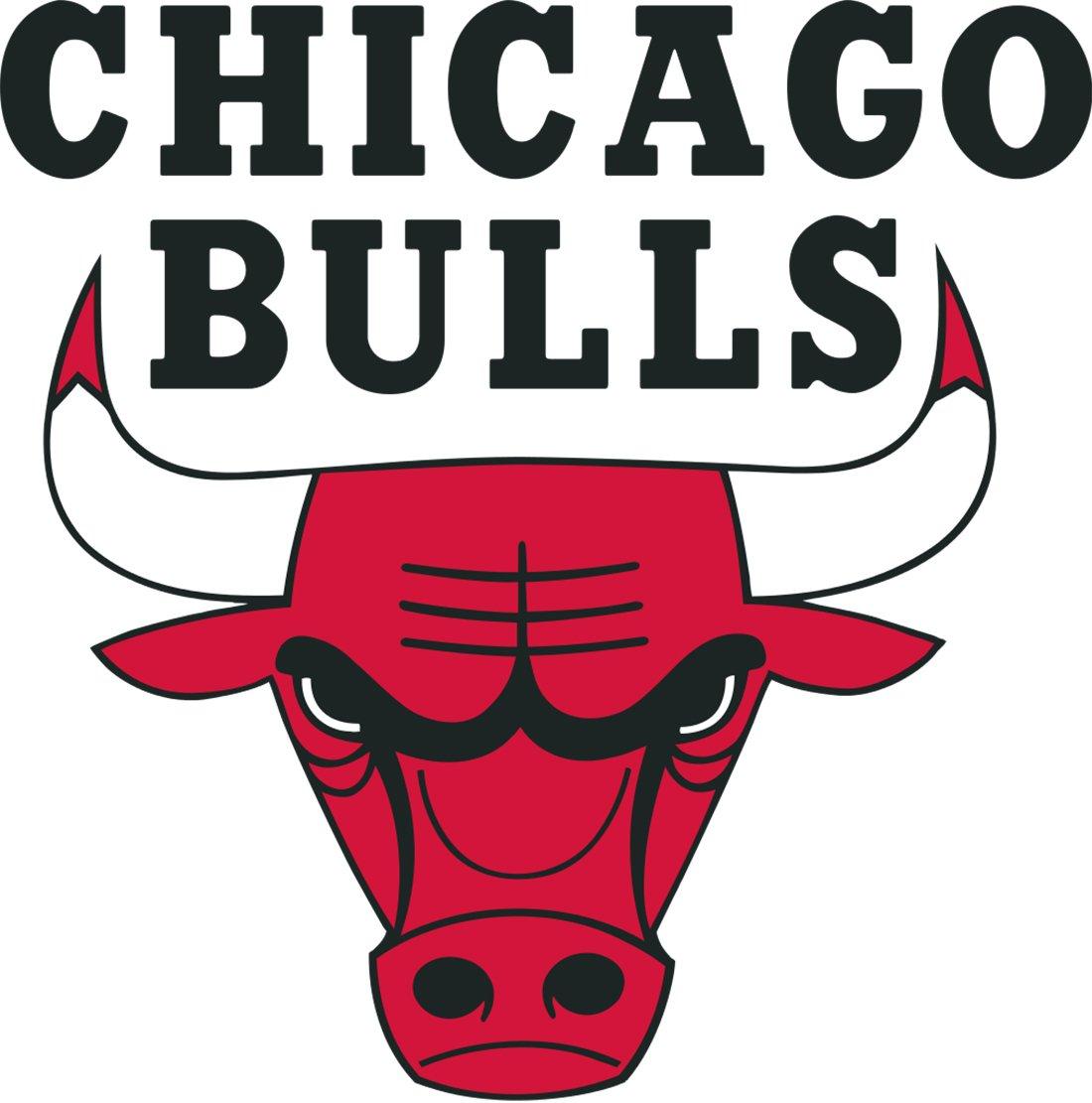 logo de los bulls en viva basquet