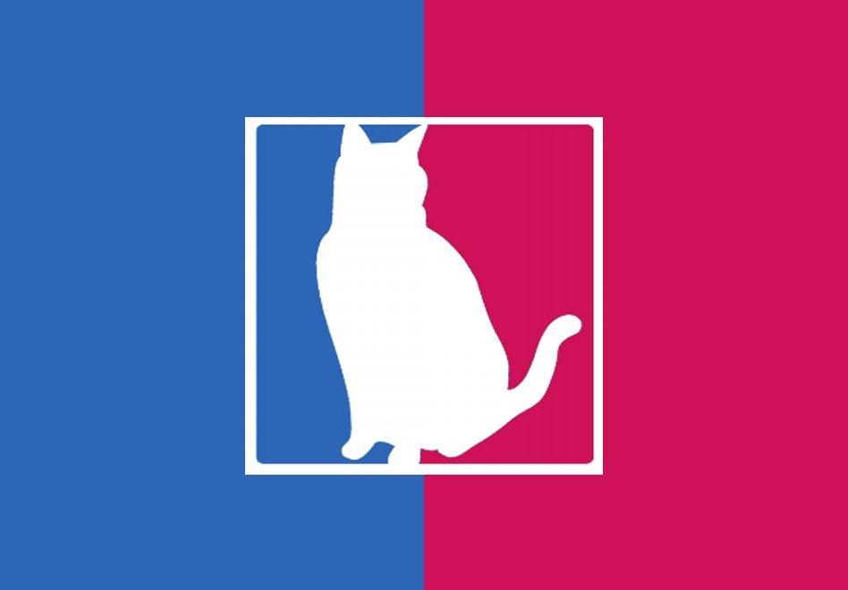 Mascotas exóticas de los basquetbolistas por Viva Basquet