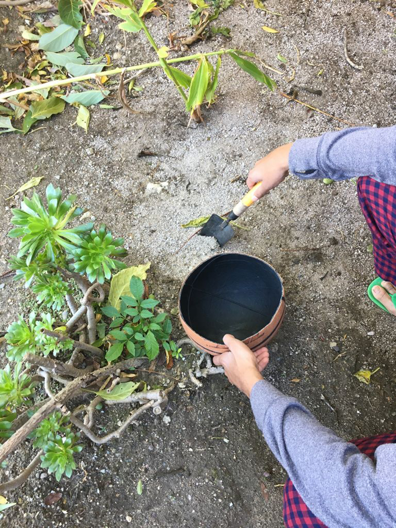 Maceta echa de balón: ¡A plantar!